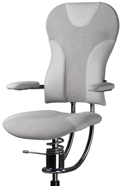 Office Chairs for healthy back - Spinal