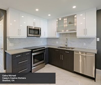 Contemporary Kitchen Cabinets in Thermofoil - Kitchen Cra