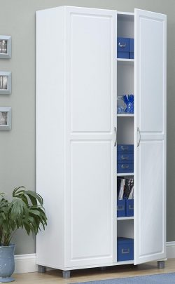 Top 10 Best Plastic Storage Cabinets in 20