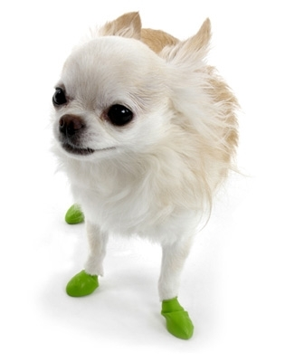 Disposable/Reusable Dog Boots in Tiny Lime Green - Apparel - Shoes .